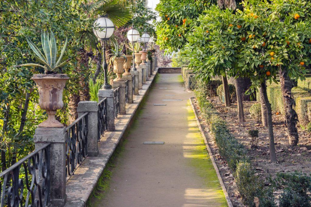 Mártires jardines DSC 2122