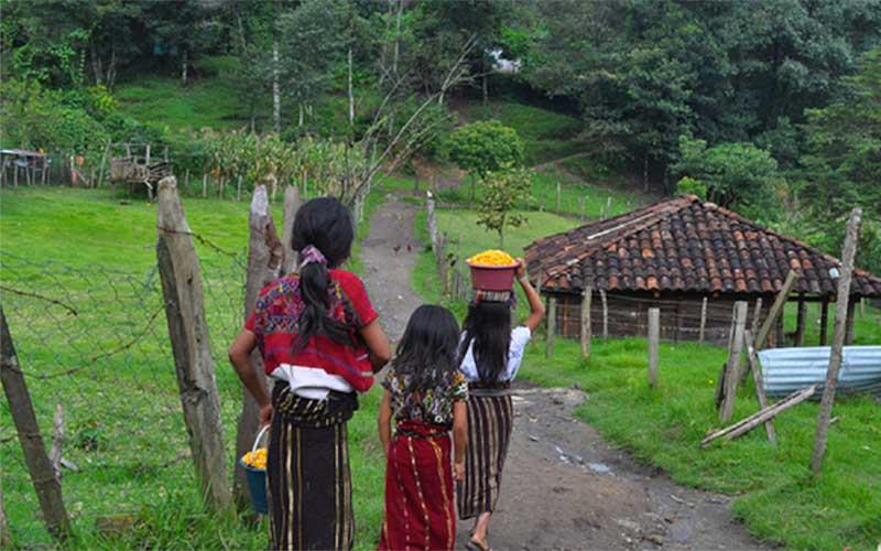 viaje a guatemala-pueblos ixiles